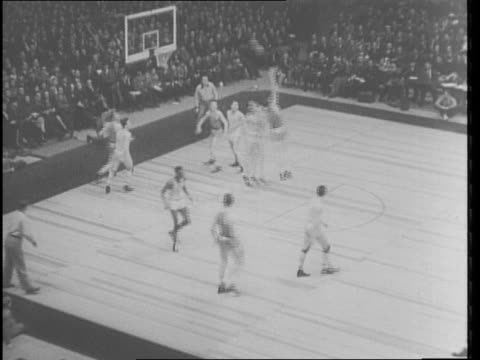 game in madison square garden / montage of game action / spectator laughing / crowd applauding / nyu players on sideline / basketball game notre dame... - new york university stock videos & royalty-free footage