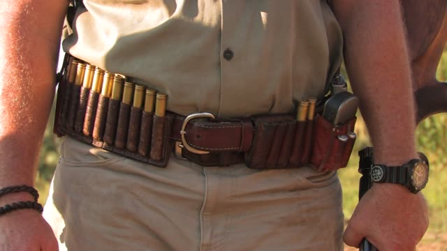 a game ranger wears a gun belt stocked with ammunition. available in hd. - gun belt stock videos and b-roll footage