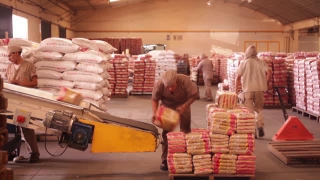 ganaderos y agricultores bolivianos de la region de santa cruz se muestran criticos respecto al expresidente evo morales y sus politicas en favor de... - afp stock videos & royalty-free footage