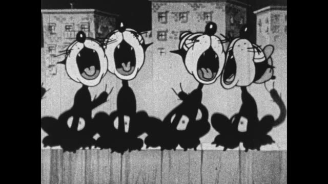 Gang of alley cats sing on the fence and annoy hotel guests who throw garbage at them