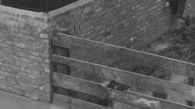 1947 montage a gang of boys destroying a fence / united kingdom - 公共物破壊点の映像素材/bロール