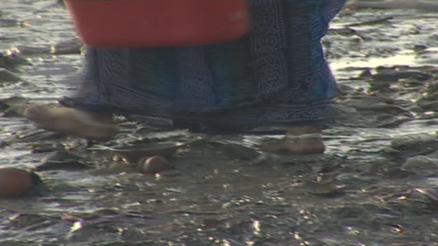 ganges river cu on a woman's feet as she squelches barefoot in the muddy riverbank in varanasi - barefoot stock videos & royalty-free footage