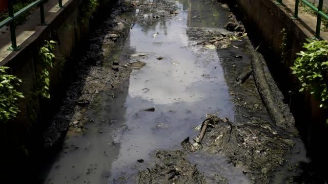vidéos et rushes de les ordures et les eaux usées de la maison et le flux industriel de facto au canal dans la capitale. - sac