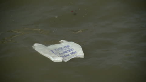 a garbage back that says thank you floats in the hudson river - floating on water stock videos & royalty-free footage