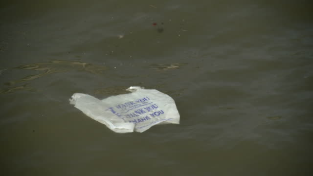 vídeos y material grabado en eventos de stock de a garbage back that says thank you floats in the hudson river - bolsa de plástico