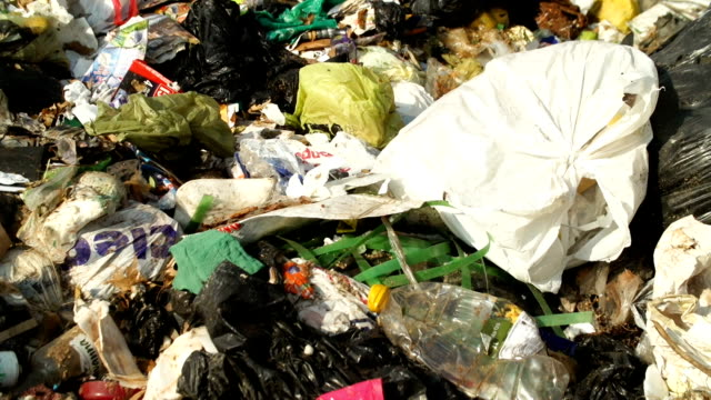 garbage dump, johannesburg, south africa - sopsäck bildbanksvideor och videomaterial från bakom kulisserna