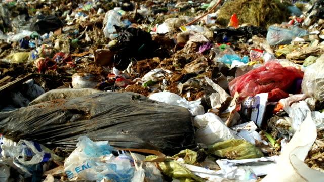 vídeos de stock e filmes b-roll de garbage dump, johannesburg, south africa - saco de lixo