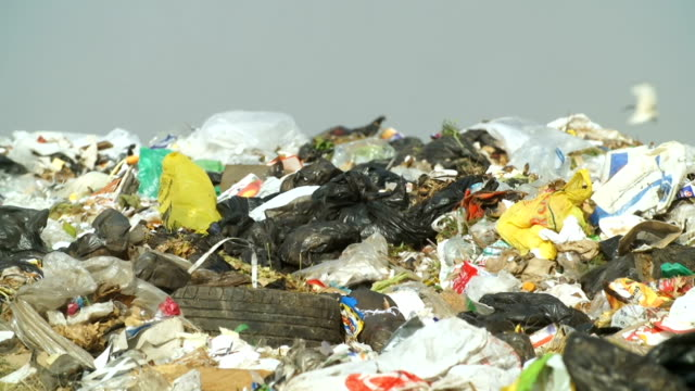 garbage dump, johannesburg, south africa - plastic bag stock videos and b-roll footage