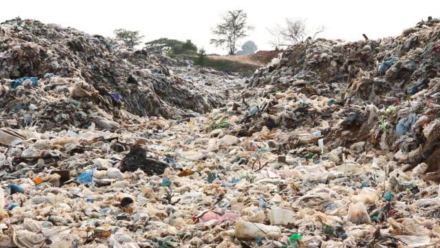 Müllkippe Website