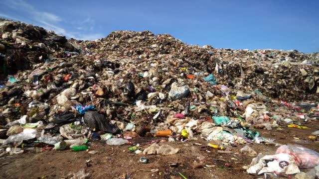 garbage dump - rubbish dump stock videos & royalty-free footage