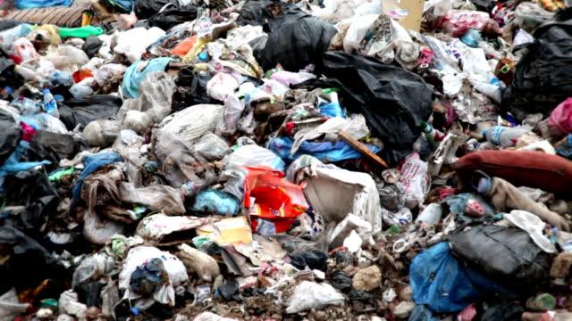 garbage dump - bulldozer stock videos & royalty-free footage