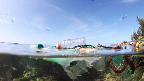 garbage floats at surface, bermuda - environmental issues stock videos & royalty-free footage