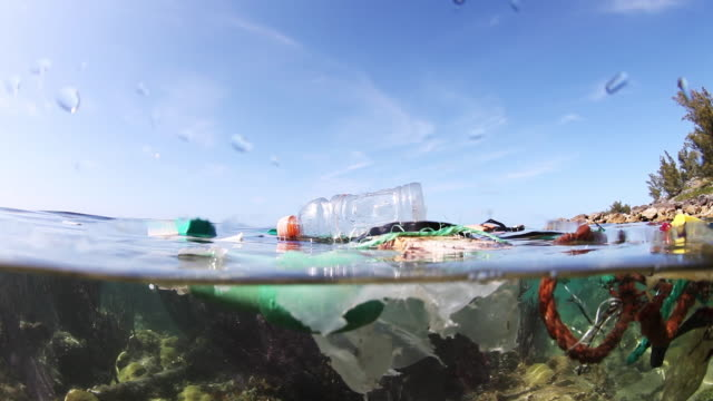 garbage floats at surface, bermuda - environmental issues stock-videos und b-roll-filmmaterial