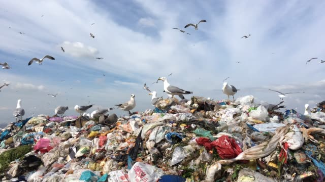 garbage heap of a metropolis - air pollution stock videos & royalty-free footage