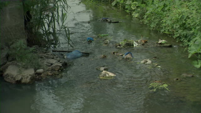 ms ha td garbage in rocky stream / chongqing, sichuan province, china - dirty stock videos and b-roll footage