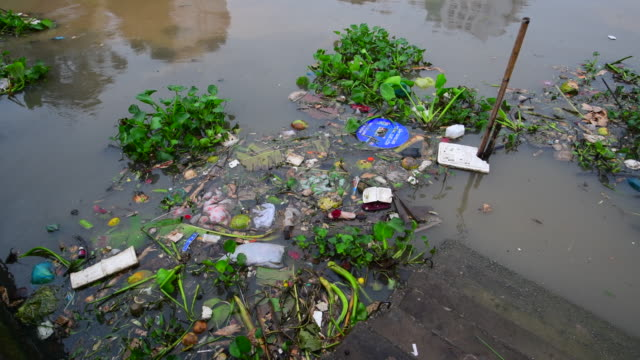 vídeos de stock, filmes e b-roll de lixo no rio, as consequências da poluição das águas urbanas - drenagem