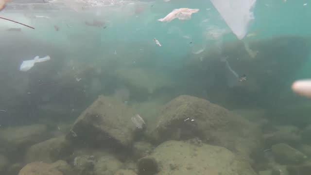 garbage in the sea - vattenförorening bildbanksvideor och videomaterial från bakom kulisserna