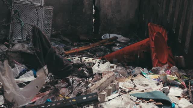 stockvideo's en b-roll-footage met garbage in urban scene - knaagdier