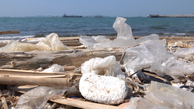 Garbage Pollutions on Dirty Beach