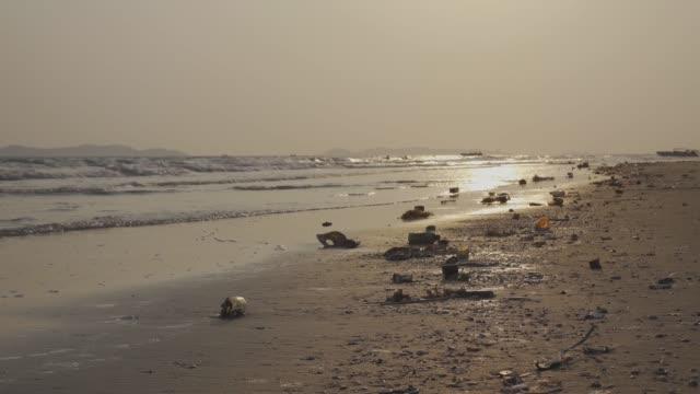 vídeos de stock, filmes e b-roll de o lixo que as pessoas jogam no mar flutuou ao lado da praia e os animais vieram comer lixo. é poluição marinha - sujo