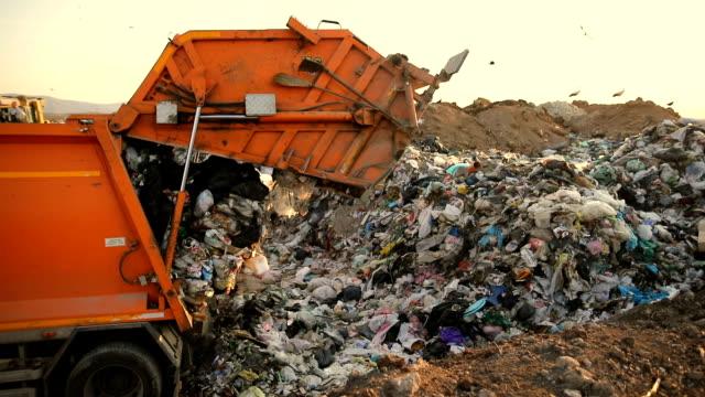 vidéos et rushes de camion poubelle sur une décharge qui jette les ordures. véhicule transportant des ordures aux déchets - camion poubelles