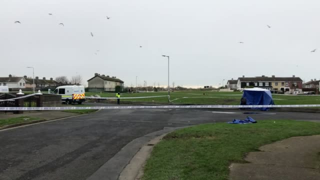 gardai and forensics at the scene in coolock, north dublin where body parts were found in a bag on monday night. the alarm was raised shortly before... - limb body part点の映像素材/bロール