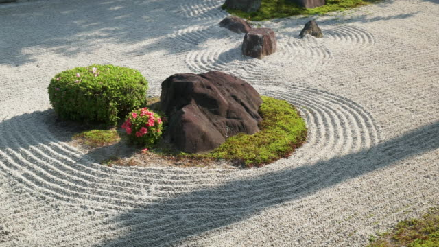 garden at japanese temple. kyoto, japan - kyoto temple stock videos and b-roll footage