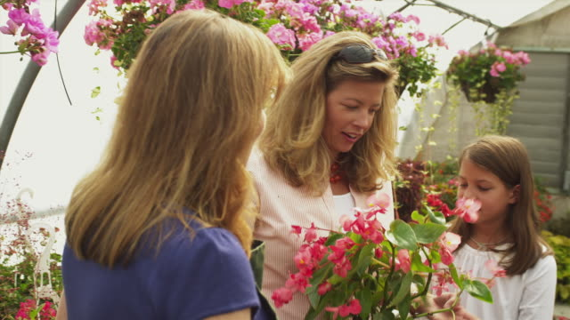 ms garden center employee talking to woman with daughter (8-9) in greenhouse , manchester, vermont, usa - garden center stock videos and b-roll footage