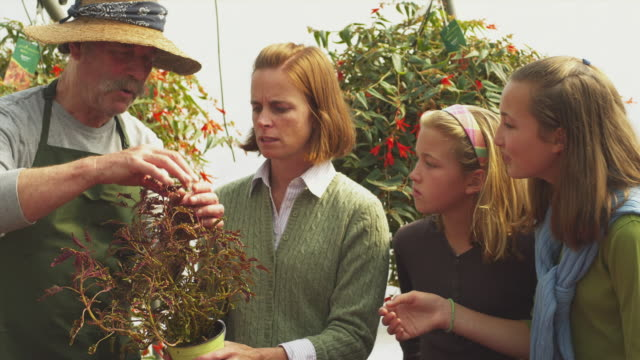 ms pan garden center employee talking to women and her two daughters (11-12) holding dead plant, manchester, vermont, usa - 園芸学点の映像素材/bロール
