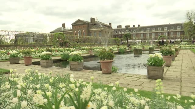 garden inspired by diana princess of wales opens at kensington palace garden inspired by diana princess of wales opens at kensington palace england... - kensington palace video stock e b–roll