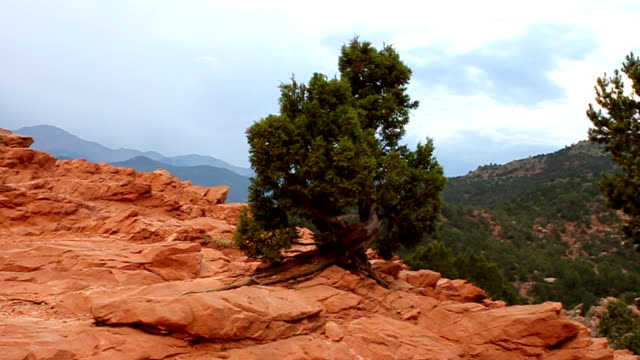 garden of the gods und pikes peak & - red rocks stock-videos und b-roll-filmmaterial