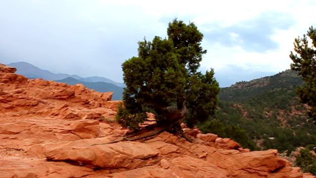 vídeos de stock, filmes e b-roll de jardim dos deuses & pikes peak - red rocks