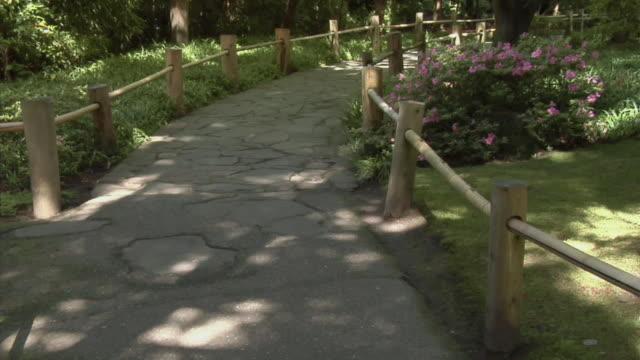 ms, tu, garden path, san francisco, california, usa - garden path stock videos and b-roll footage