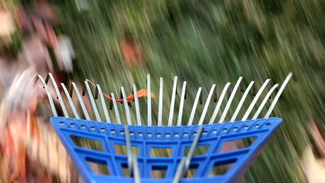 vídeos de stock e filmes b-roll de jardim ancinho ponto de vista de - ancinho equipamento de jardinagem