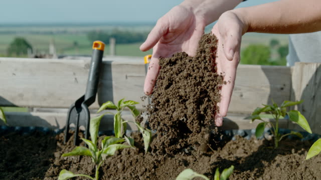 cu super slow motion garden soil falling from cupped hands of woman gardening - soil stock videos & royalty-free footage