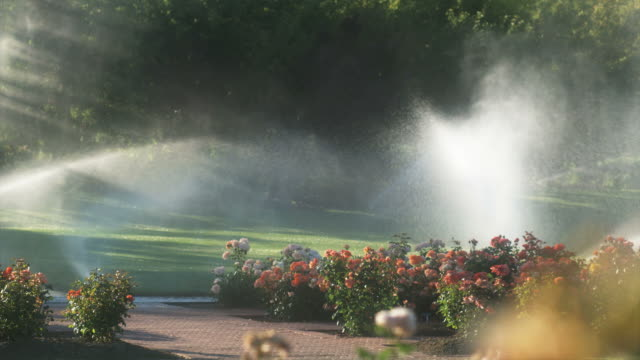 slo mo ws pan garden sprinklers spraying flowers and lawn in garden, lehi, utah, usa - lehi stock videos & royalty-free footage