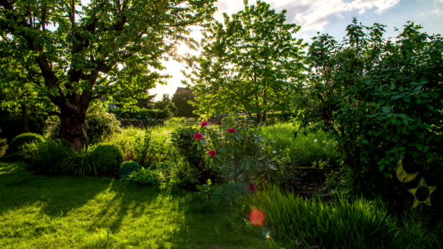 stockvideo's en b-roll-footage met crane up: garden - formal garden