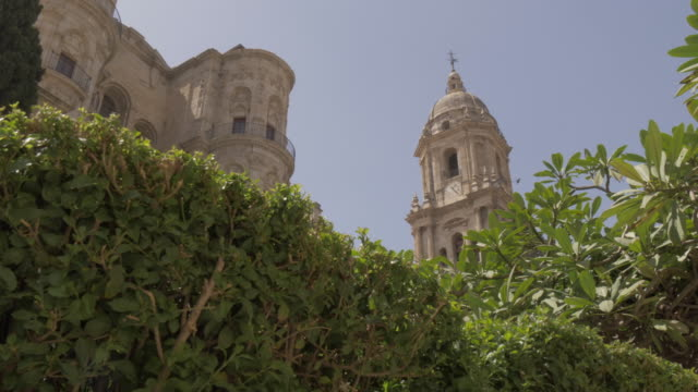 Garden view of Malaga Cathedral, Malaga, Andalucia, Spain, Europe