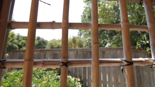 garden window view - window frame stock videos and b-roll footage