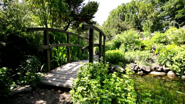 garden with bridge and pond - formal garden stock videos & royalty-free footage
