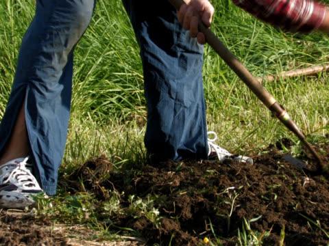 pal: garden work - weeding stock videos & royalty-free footage