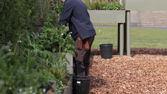 garden workers tend to one of the new garden installation at the secret world of plants at kew gardens on may 6, 2021 in london, england. - springtime stock videos & royalty-free footage