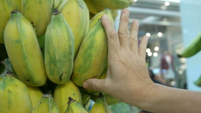 vídeos de stock, filmes e b-roll de verificação da qualidade da banana fresca de jardineiro - orgânico
