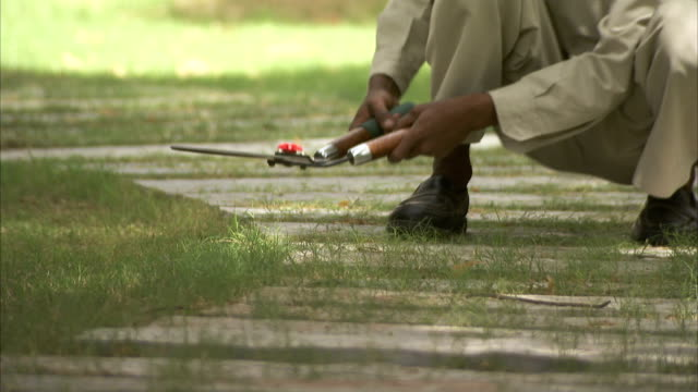 a gardener clips grass with shears. - secateurs stock videos & royalty-free footage
