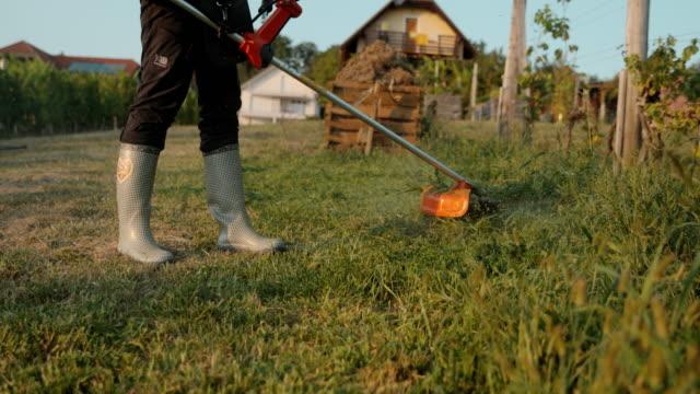 slo mo gardener taglia l'erba con un trimmer - tosaerba video stock e b–roll