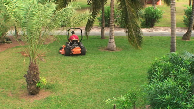 gardener mowing the grass of a tropical garden - lawn stock videos & royalty-free footage