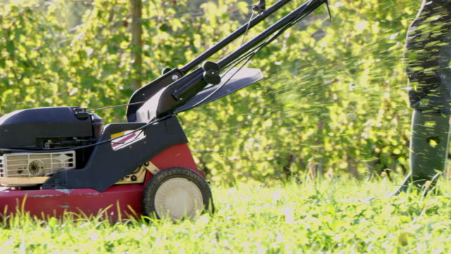 slo mo gardener mowing the lawn - prato rasato video stock e b–roll