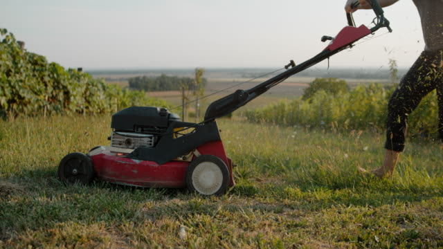 slo mo gardener mowing the lawn with a mower - lawn stock videos & royalty-free footage