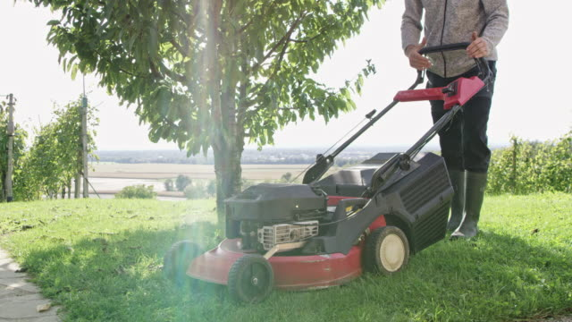 ds gardener mowing the lawn with a mower - tagliaerba video stock e b–roll