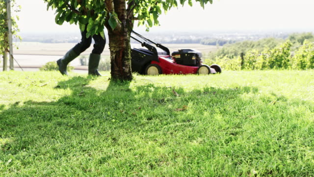 slo mo gardener mowing the lawn with a mower - tagliaerba video stock e b–roll
